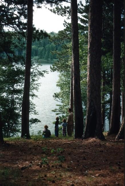 Minnesota - Preacher's Grove - Itasca State Park