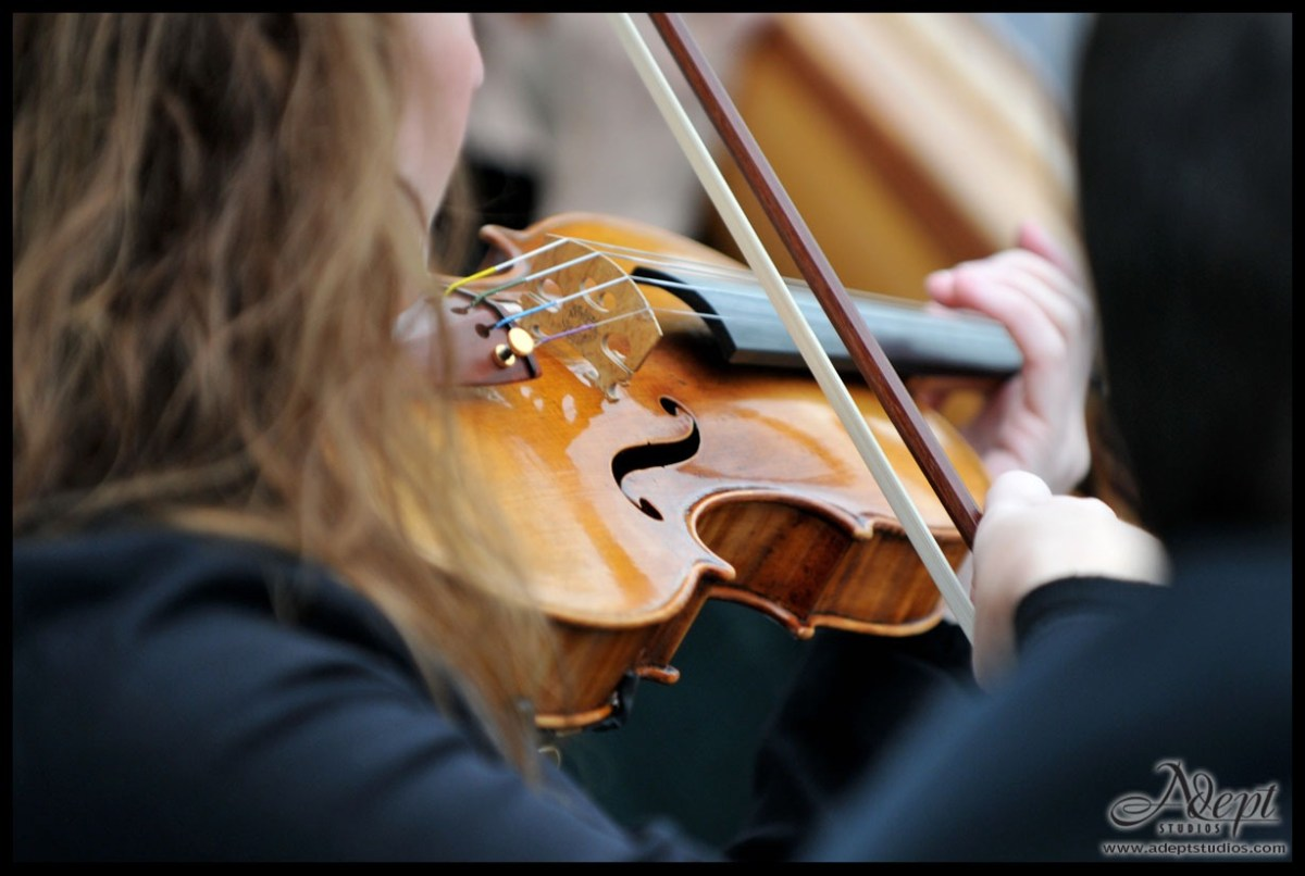 Wedding Violin and Music in Sarasota
