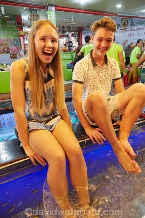Fish tickling young tourists as they eat dead skin off