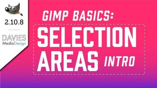 GIMP 2.10 Selection Area Basics In-depth Tutorial
