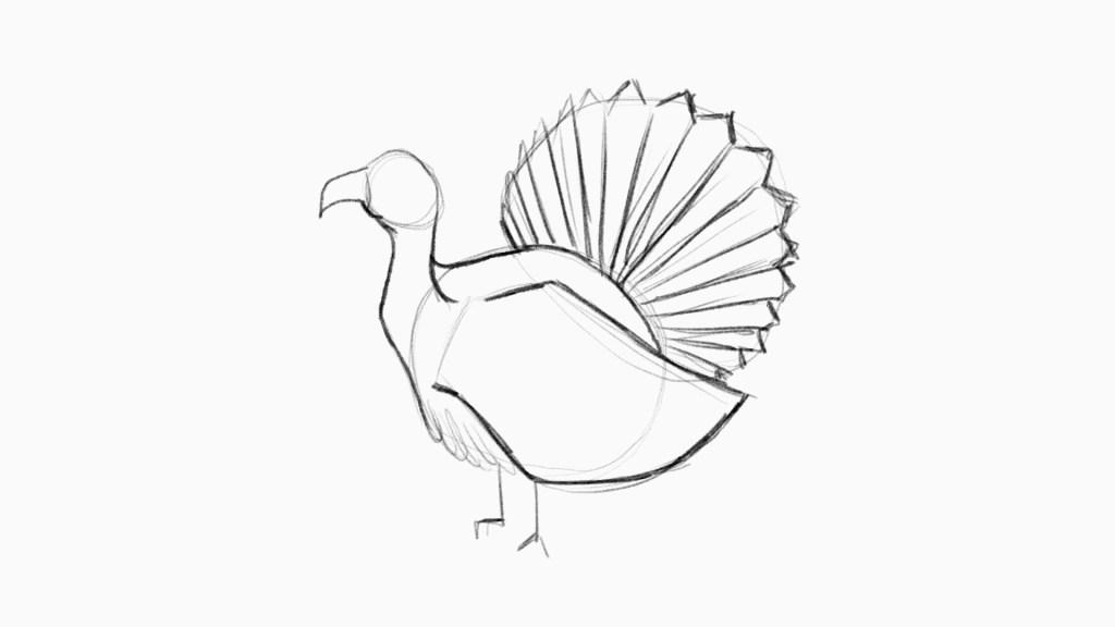 Turkey drawing lesson