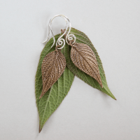 DaVine Jewelry, Bronze Pineapple Sage Leaf Dangle Earrings