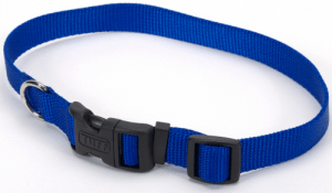 Adjustable/Buckle Collars & Harnesses