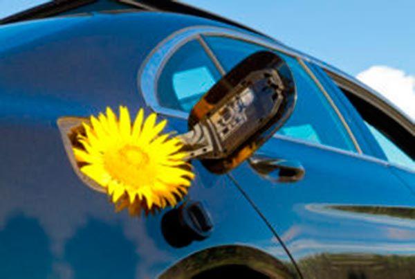 Qué es el biogás y cuáles son sus usos