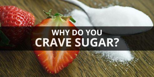 crave sugar