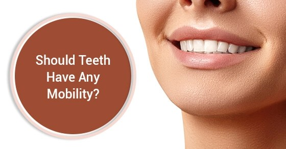 Should Teeth Have Any Mobility?