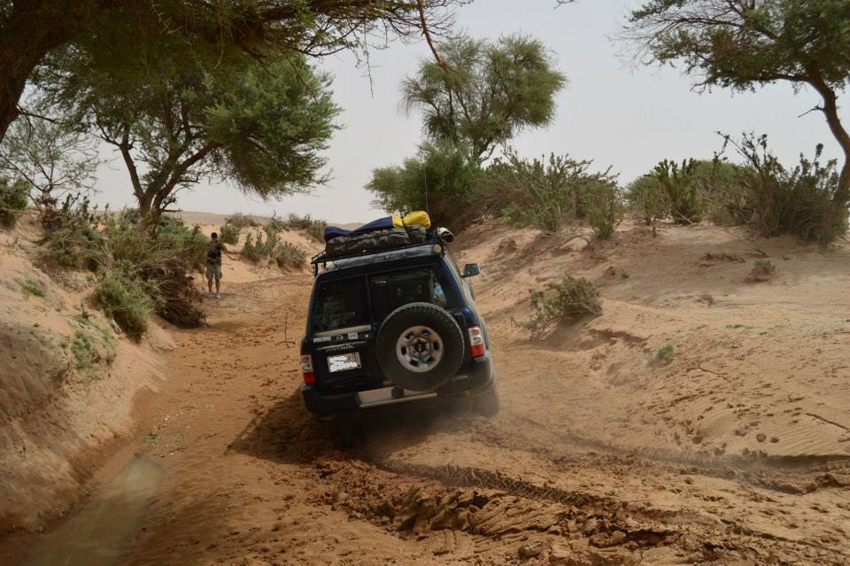 Wadi in the Desert