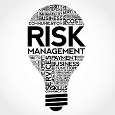 The 4 Types of IT Project Risk faced by IT Project Managers