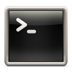 screen command
