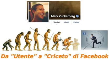 criceto Facebook