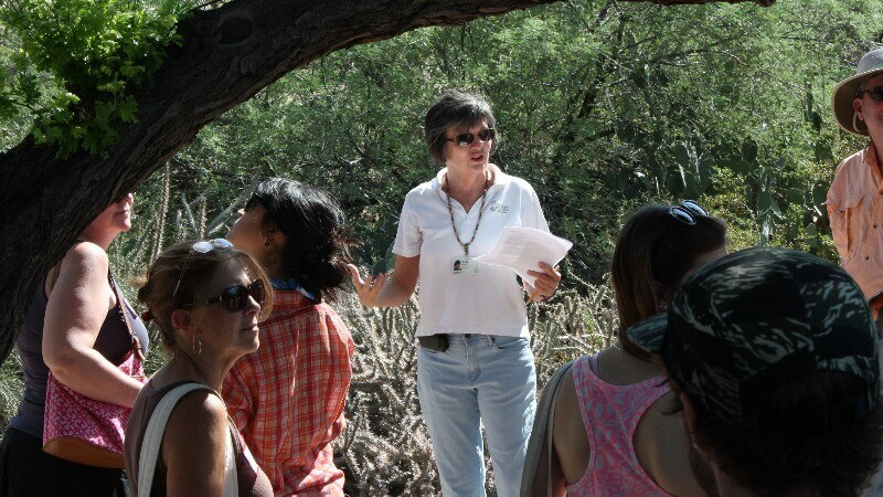 Nature Field Trips for Students in Phoenix  Outdoor
