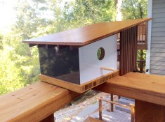 Architecture-Birdhouse-Highlands