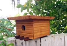 Architecture-Birdhouse-Tea-Garden-House