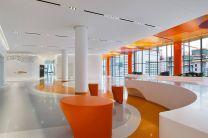 Rehabilitation Institute of Chicago (RIC)