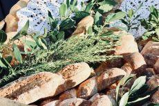 radetici-sveta-marija-boris-ruzic (27)