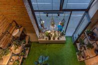 biljke-ducan-hortiart-home-zvonimirova (6)