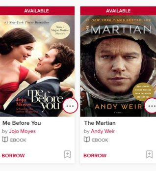 screen shot detail of two ebooks on the OverDrive site