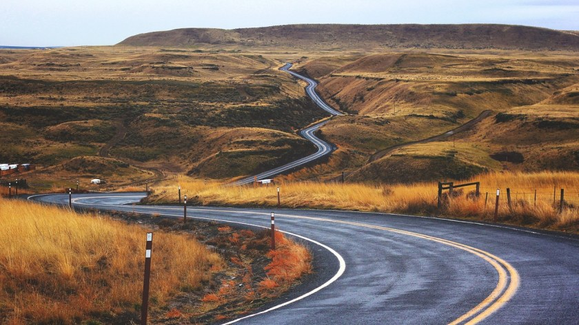 photo of road and landscape