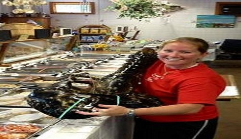 21-Pound Lobster Caught, Could Be Sold For Chairty