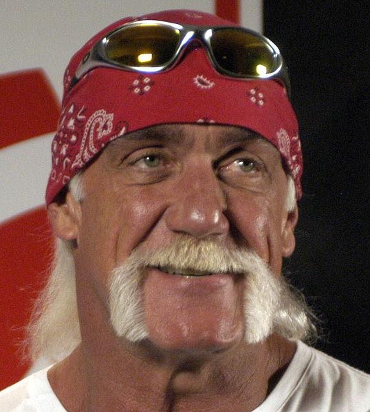 Hulk Hogan refiles lawsuit Against Site