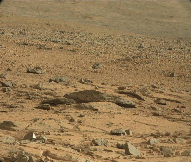 Mars Rat? Blogger Spots 'Creature' In NASA Curiosity Rover Image (PHOTO)