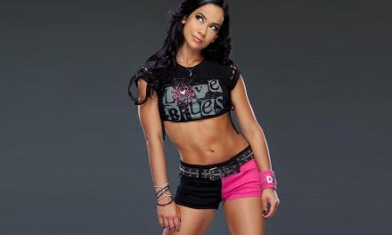 WWE Star AJ Lee Retires Abruptly UPDATE