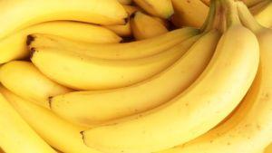 Are bananas going extinct