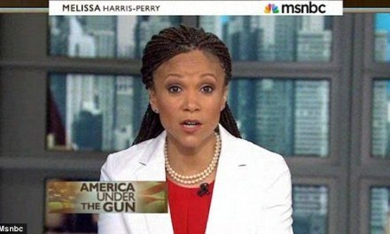 Melissa Harris-Perry's MSNBC Show Is Canceled: Reports