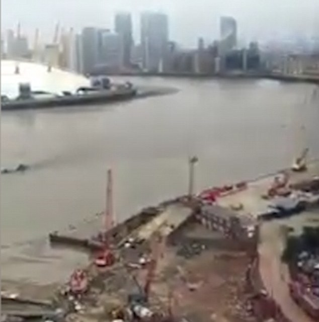 Creature in Thames:  Is Loch Ness Monster Now In London? (PHOTO)