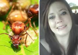 Fire Ants Kill Alabama Woman  Talking On Her Cell Phone (PHOTO)