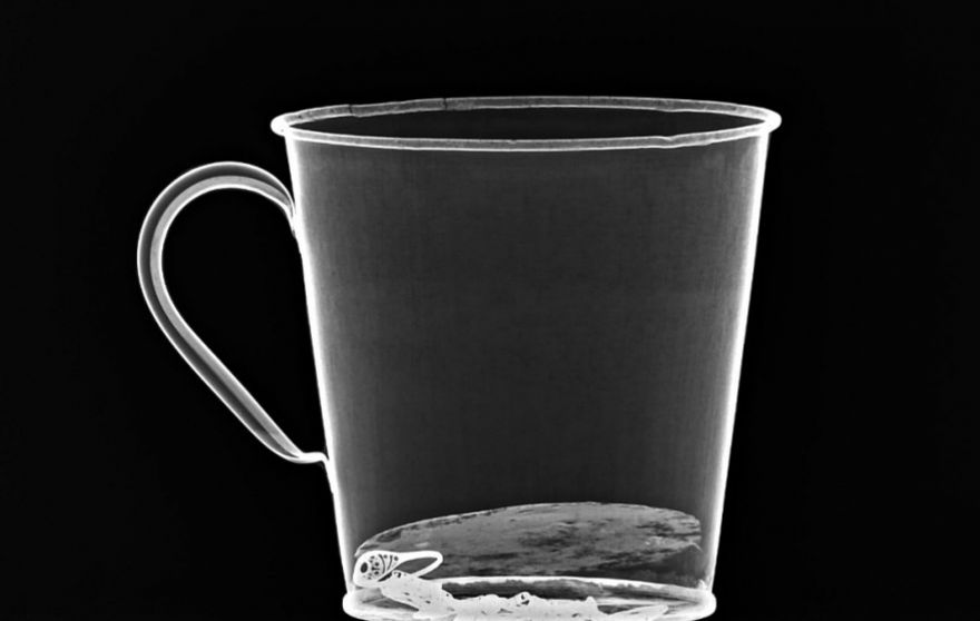 An x-ray of the mug. (Auschwitz Museum)