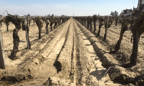California Drought Conditions Were Preventable