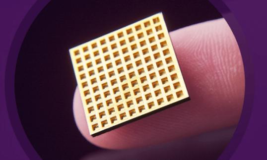 MIT-Langer-Cima-2 michrochip implants