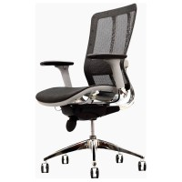 Future Black Mesh Low Back Office Chair