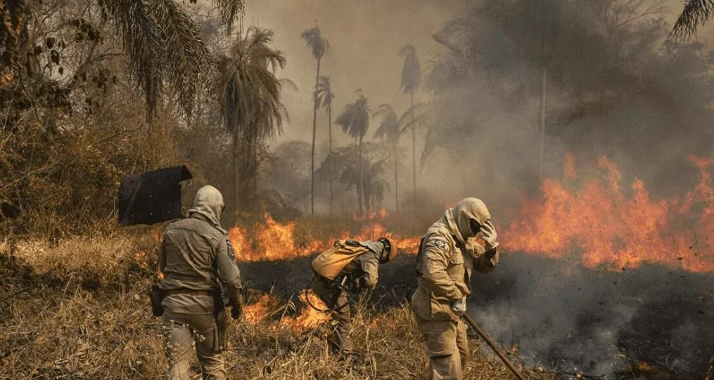 Trabalhadores lutam contra queimadas