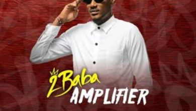 Photo of 2Baba – Amplifier