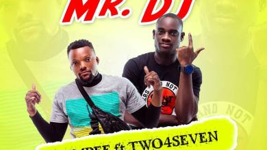 Tempee artwork - Tempee feat. Two4Seven - Mr DJ (Mixed by DatBeatGod)