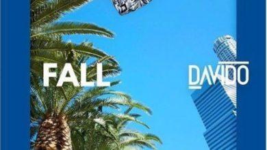 Photo of Davido feat. Busta Rhymes & Prayah – Fall (Remix)