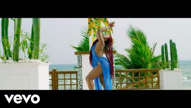 Photo of D'banj x 2Baba – Baecation (Official Video)
