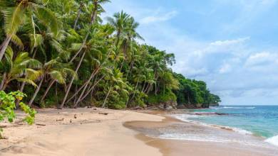 Photo of AfroNation Names Laboma Beach For Maiden Event Location