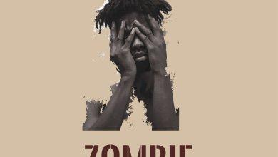 Photo of Lyrics: Kwesi Arthur – Zombie (Prod. by TwoBars)