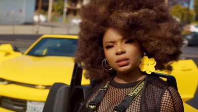 Photo of Yemi Alade – Vibe (Official Video)