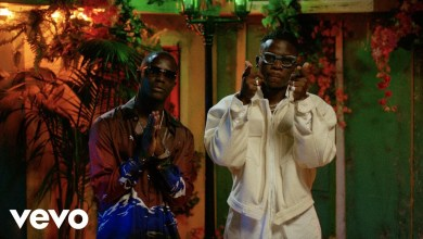 Photo of Stonebwoy ft. Chivv – Good Morning (Official Video)