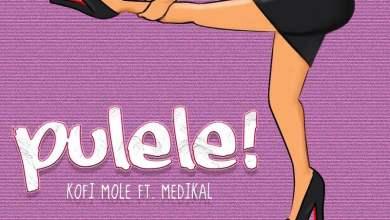 Kofi Pulele cover art - Kofi Mole - Pulele ft. Medikal