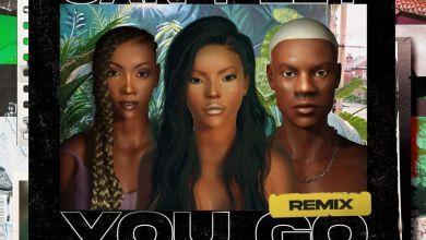 stefflon don remix art - Stefflon Don - Can't Let You Go (Remix) ft. Tiwa Savage & Rema