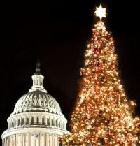 Capitol Christmas Tree Lighting Ceremony - DC Metro Plus ...