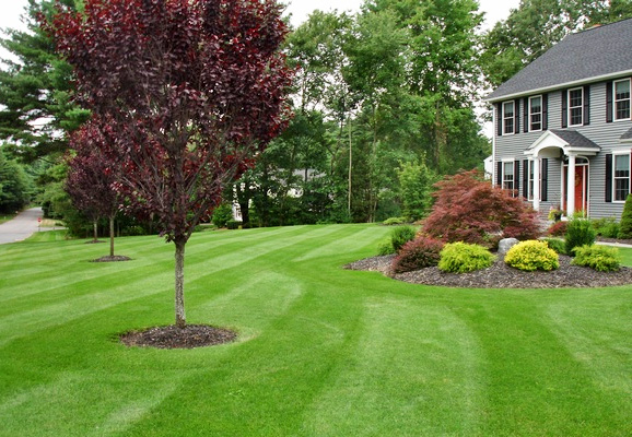 lawn care property maintenance
