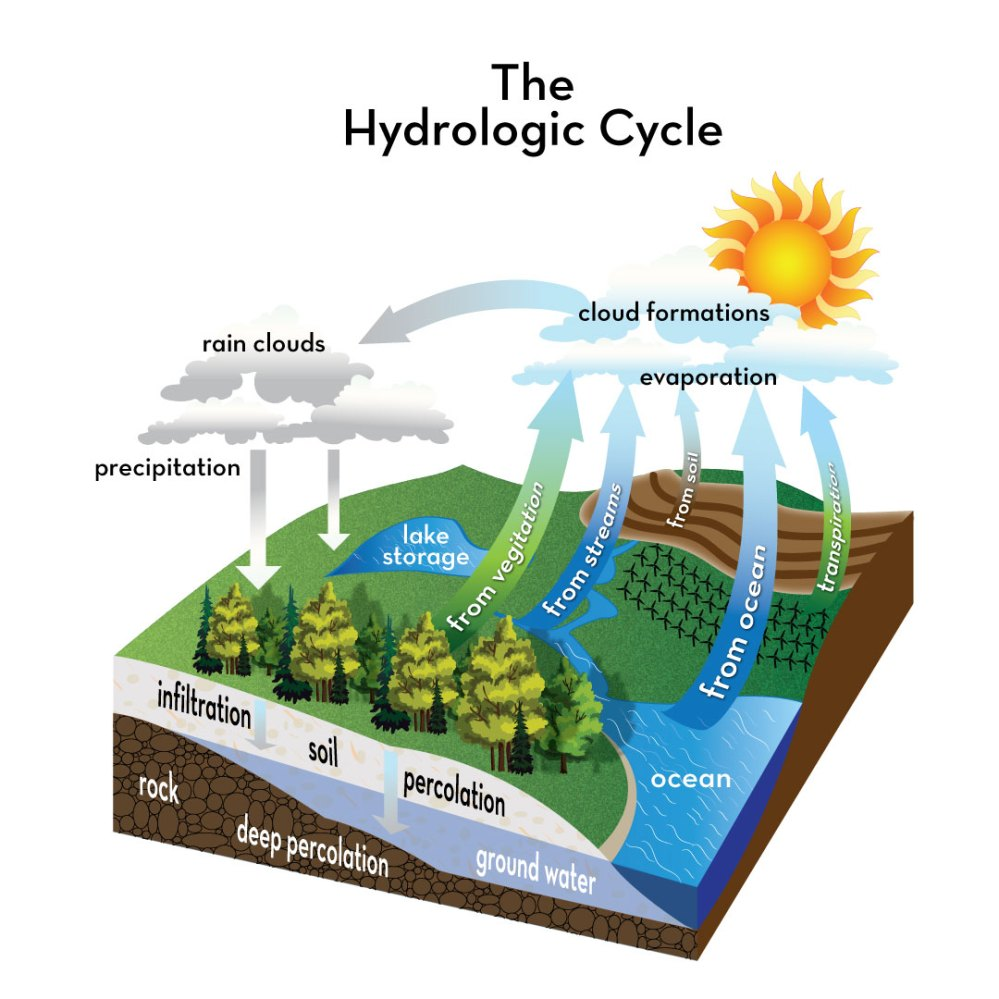 medium resolution of a watershed is a land area that channel rainfall and snowmelt to creeks streams and rivers in a process known as the hydrologic cycle fig 1