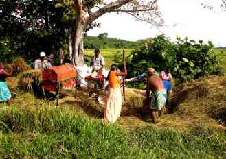 Arbeiten in Sri Lanka