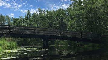 image of a bridge - for Dorreen Dembski Communication Services faciliation and training